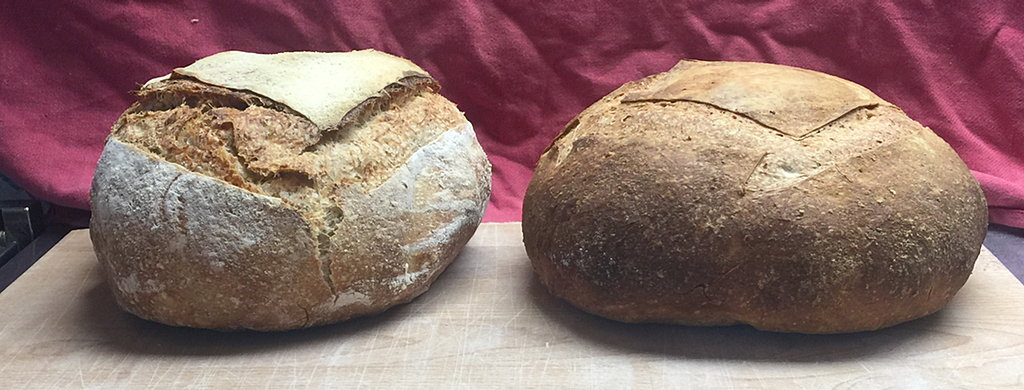 two rustic bread loaves